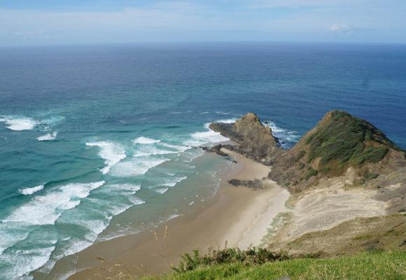 Путешествие по Новой Зеландии. Часть 4. Вокруг Северного острова.